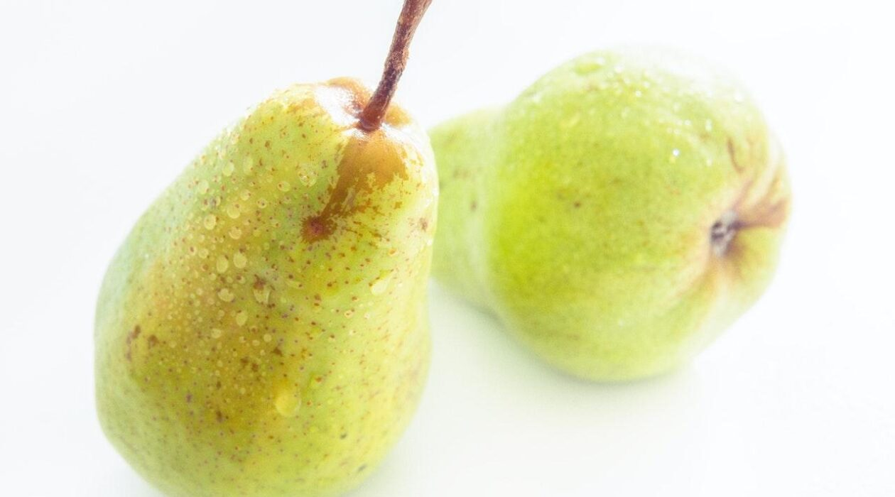 5 Ways Pear Can Boost Your Health Feature